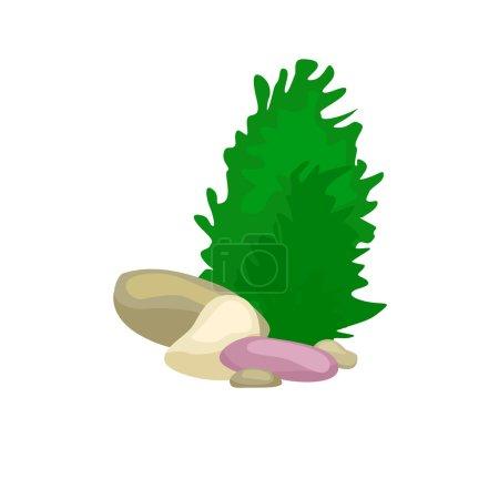 Photo pour Algues, coraux colorés et algues sur fond blanc. Vecteur flore et faune sous-marine . - image libre de droit