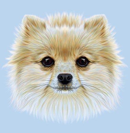 Illustrative Portrait of Pom Pom