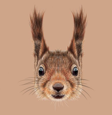Illustrated Portrait of Squirrel