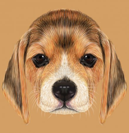 Illustrated Portrait of Beagle Dog
