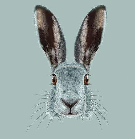 Photo for Cute Face of Wild Hare on blue background - Royalty Free Image