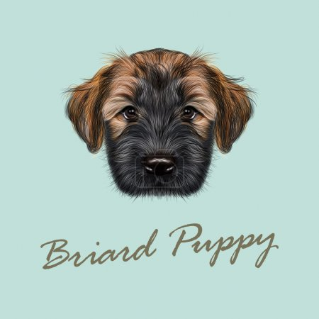 llustrated Portrait of Briard puppy.