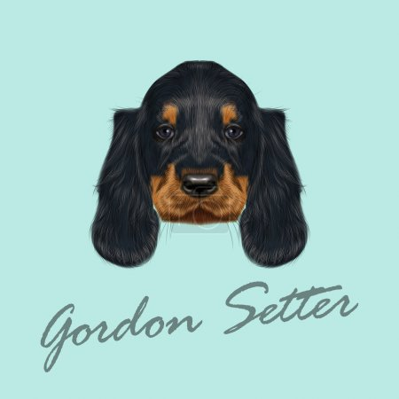Vector Illustrated Portrait of Gordon Setter dog. ...