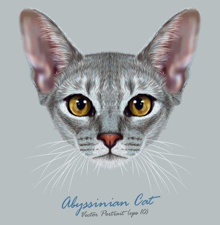 Vector Illustrative Portrait of Abyssinian Cat