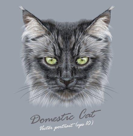 Illustration pour Chat domestique sibérien animal visage mignon. Vecteur drôle cheveux longs chaton portrait de la tête. Portrait réaliste en fourrure de chaton noir de Sibérie - image libre de droit