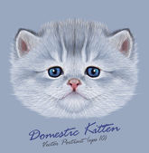 Kitten animal cute face Vector funny little cat head portrait Realistic fur portrait of little silver kitty isolated on blue background