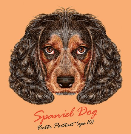 Vector Portrait of Spaniel Dog