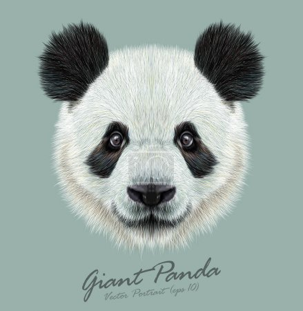 Illustration for Panda animal cute face. Vector Asian bear head portrait. - Royalty Free Image
