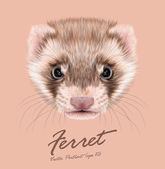 Ferret animal cute face Vector funny cinnamon polecat head portrait Realistic fur portrait of brown ferret creature isolated on pink background