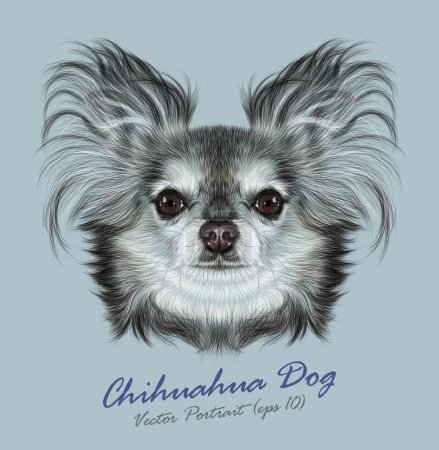 Vector Illustrative Portrait of Chihuahua dog
