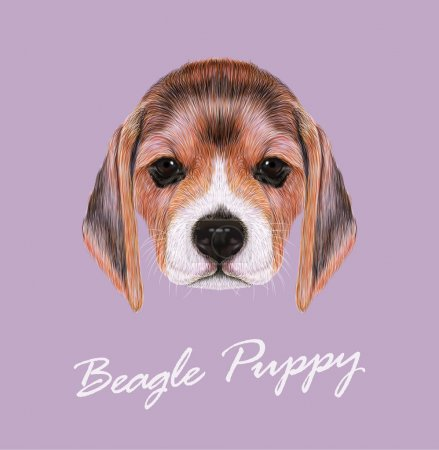 Illustration for Beagle dog animal cute face. Vector fawn British beagle puppy head portrait. Realistic fur portrait of purebred brown beagle doggie - Royalty Free Image