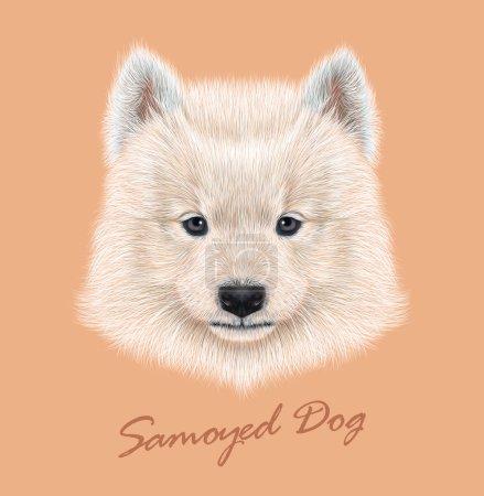 Illustration pour Chien Samoyed animal mignon visage. Vector mignon eskimo blanc spitz Portrait de tête de chiot Samoyed. Portrait réaliste en fourrure de jeune chiot sibérien heureux de race pure - image libre de droit