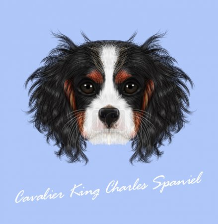Vector illustrated portrait of Dog
