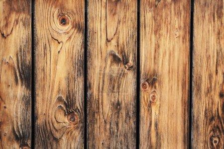 Photo pour Photographie de vieilles planches de clôture en bois de pin, avec motifs de lignes de croissance annuelles et détails de nœuds . - image libre de droit