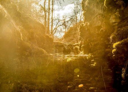 Photo pour Arrière-plan nature. rivière de montagne avec des pierres et de la mousse dans la forêt près de la pente de la montagne aux rayons du coucher du soleil . - image libre de droit