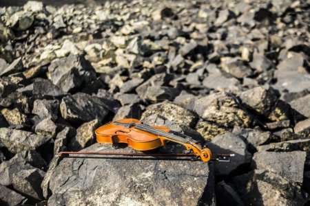 composition with violin and stones.