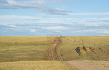 Straße auf Hügel im grünen Gras