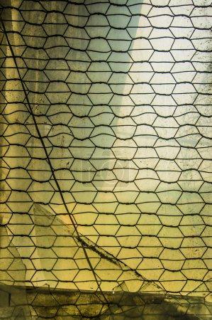 window frame with metal lattice.