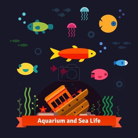 Underwater sea life