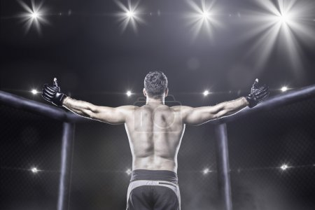 mma fighter in arena celebrating win, behind view