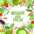 Flat Vegetables Background With Text. Organic And ...