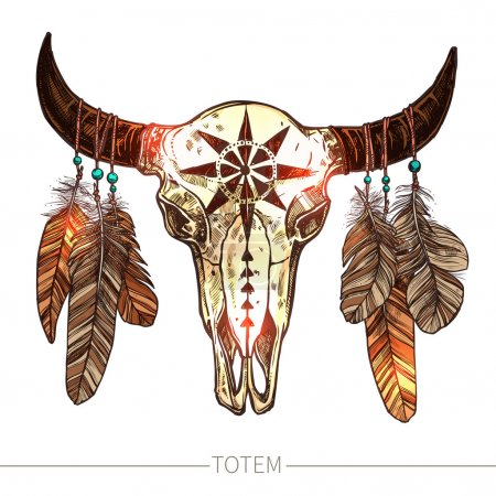 Buffalo Skull With Feathers.