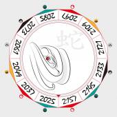 Chinese  Zodiac  Snake in a circular layout data The hieroglyph on the word is represented -