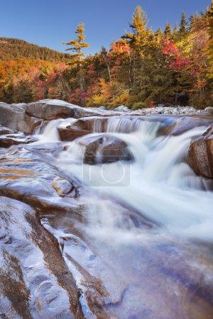 Río a través del follaje de otoño, Swift River Lower Falls, NH, Estados Unidos