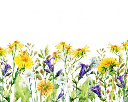 Meadow watercolor flowers card. Watercolor wild be...