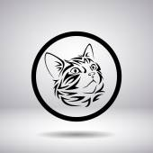 Muzzle of a cat in a circle