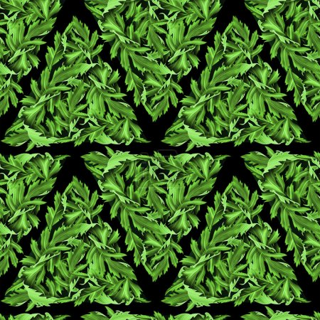 Tropical flower geometry, botanical symmetry background