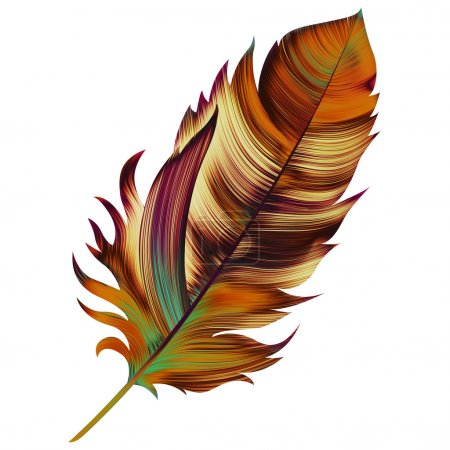 Beautiful illustration with colorful feather