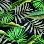 Tropical palm leaves. stylish fashion floral eleme...