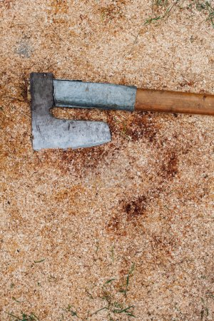 Old ax in sawdust