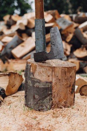 Old ax on the stump