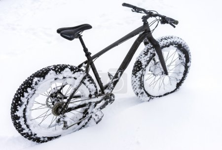 Fatbike in the snow