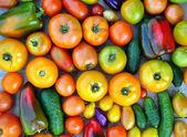 Rajčata, okurky, papriky na pozadí