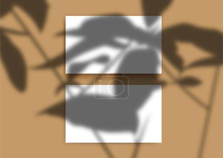Illustration pour Des cartes de visite maquillées. Superposition ombre transparente de brindilles et de feuilles. Une silhouette de branches. Soleil naturel. - image libre de droit