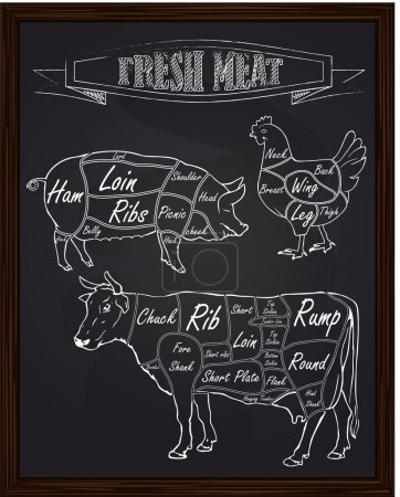 Illustration for Section diagram of a pig cow and chicken drawn in chalk - Royalty Free Image
