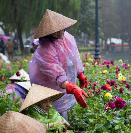 Asian gardeners with traditional conical hats
