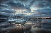 Swansea marina odrazy