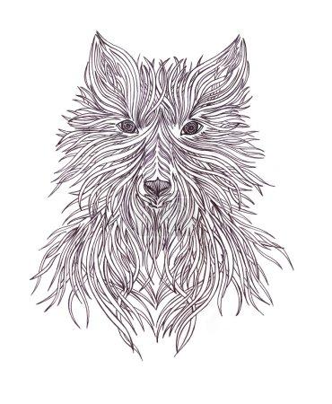 Head wolf wild beast of prey. Handmade black and white graphics.