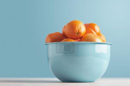 persimmon, date plum, mandarine, orange, grapefruit isolated on