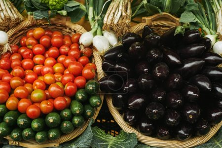 Fresh red tomatoes, zuccini eggplants in baskets outside market