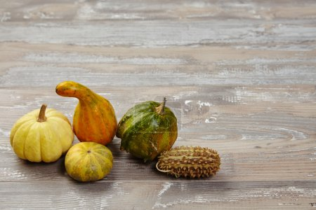 Bunch of groceries: pumpkins, patison, squash,  on grunge wooden