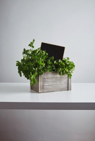 Wooden box parsley cilantro price tag isolated white