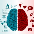 Brain infographics in two hemispheres with differe...
