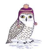 Colorful white owl in purple hat with pompon