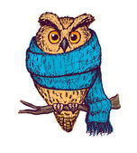 Colorful peach owl in blue scarf
