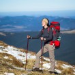 Постер, плакат: Hiker with Backpack in the wilderness